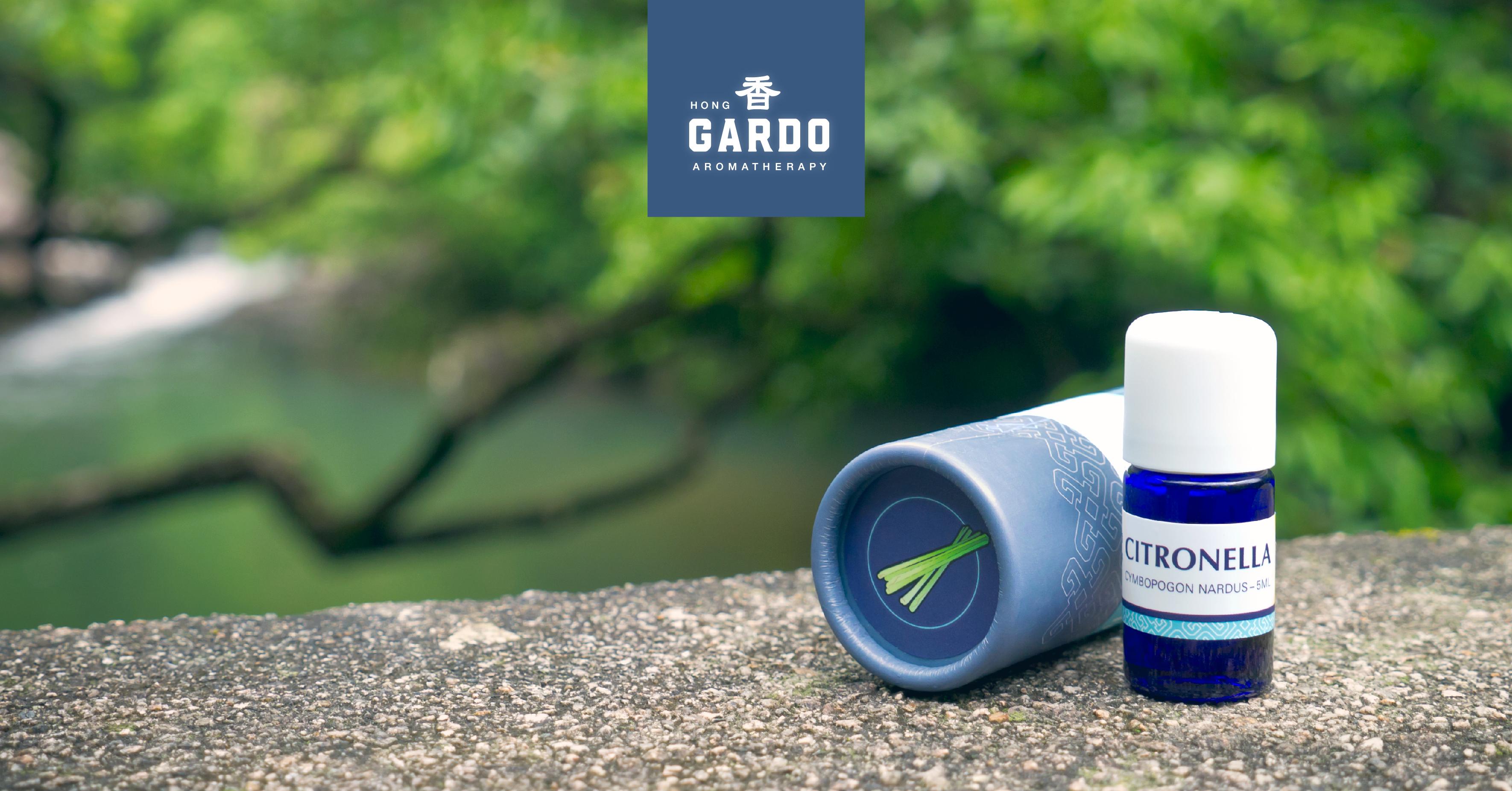 颱風來襲後的防蚊精油
